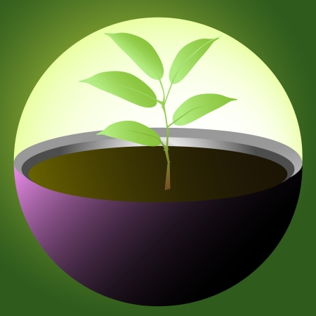 Small plant protected in glass sphere Vector
