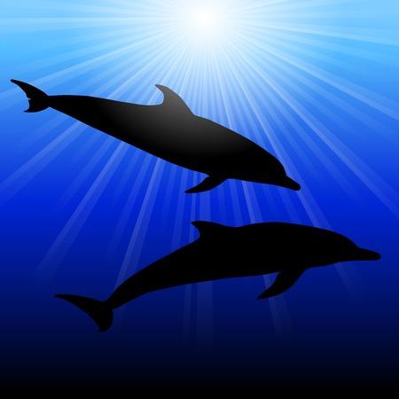 viviparous: Dolphins in  sea on sunburst background, illustration