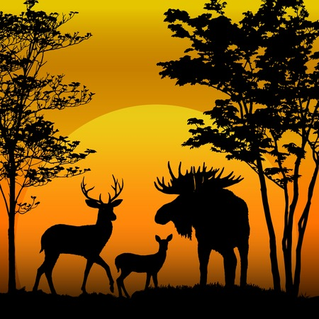 Deer and moose silhouette on sunset background Vector