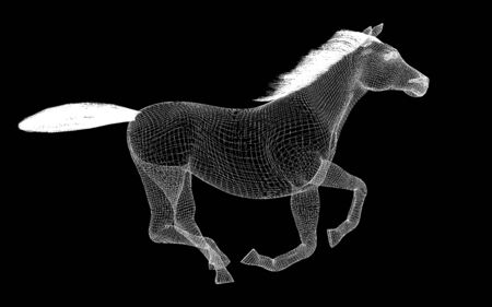 hoofed mammal: Running Horse body structure , wire model