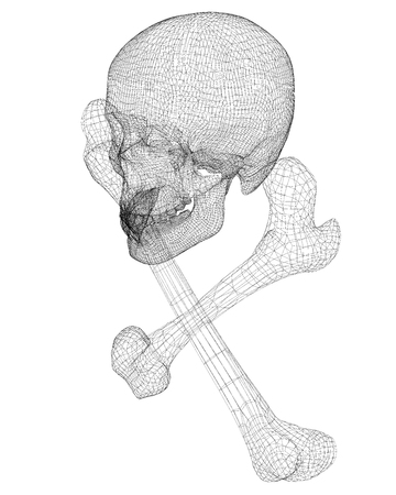 Skull And Bones, Human Body, Body Structure , Wire Model Stock Photo ...