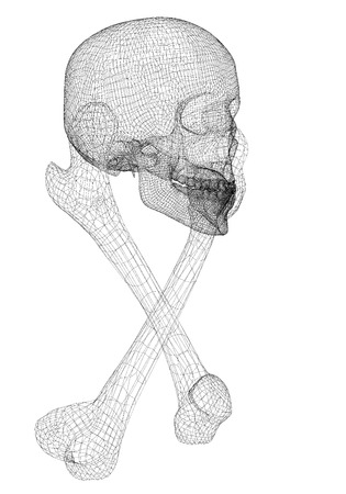 body structure: skull and Bones,  Human body,  body structure , wire model Stock Photo
