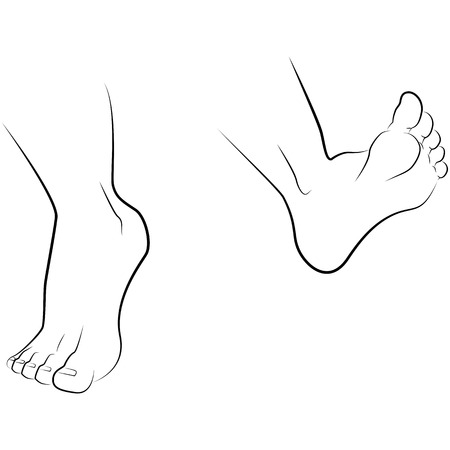 handcarves: drawing hand and foot of a man isolated on white background, vector Illustration