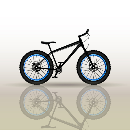 Mountain sports bike. Tuning. Bicycle parts.Fetbike.