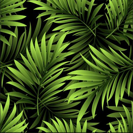 新鮮な緑の熱帯ヤシの木の葉と黒い背景に分岐パターン 写真素材 - 84855206