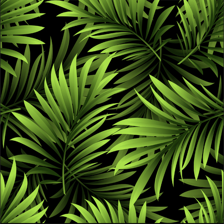 Pattern with fresh green tropical palm tree leaves and branches on a black background