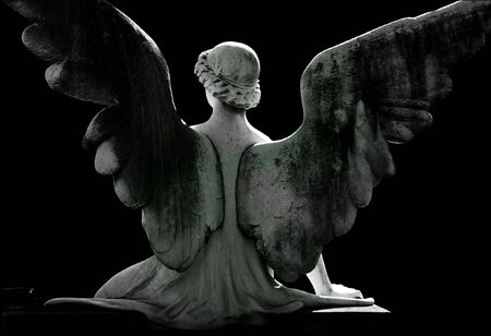 poems: angel