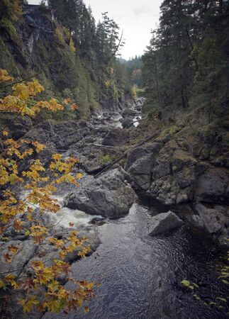vancouver island: Beautiful Sooke River in Vancouver Island