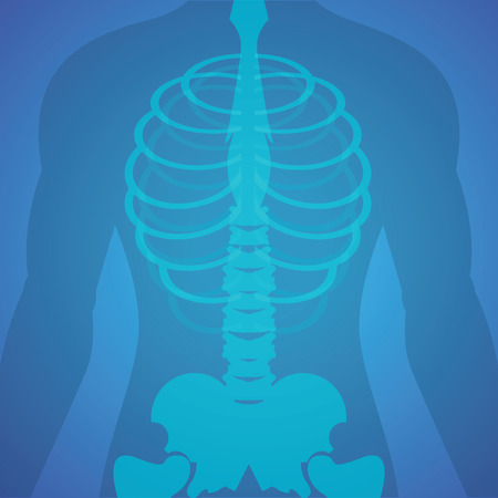 Human xray film with skeleton, medical health care Vector Illustration.