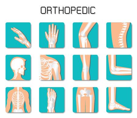 Orthopedic and spine icon set on white background, bone x-ray image of human joints, anatomy skeleton flat design vector illustration. Vektorové ilustrace
