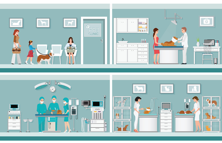Pet care with veterinary in pet clinic, animal health care conceptual vector illustration.