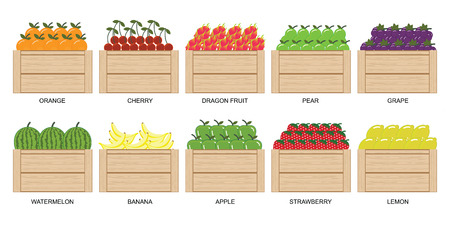 Fruits and berries in wooden box icons collection set isolated on white, vector illustration.