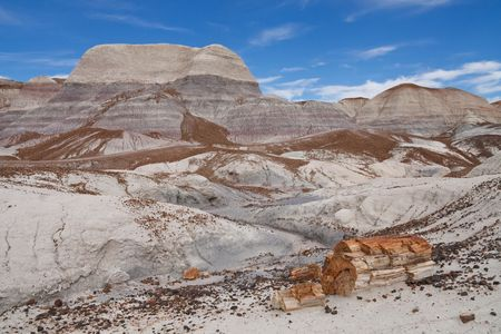 Blue Mesa Badlands in Petrified Forest National Park, Arizona, USA. Petrified Log in the Foreground. Stock Photo - 6255615