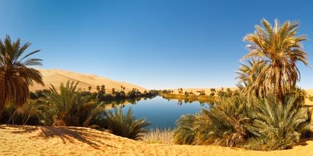 desierto del sahara: Umm al-Ma Lago - id�lico oasis en el mar de arena de Awbari, desierto del Sahara, en Libia. Foto de archivo