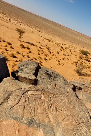 Prehistoric Rock Engraving  photo