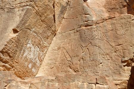 Prehistoric Rock Engraving of Elephants  photo