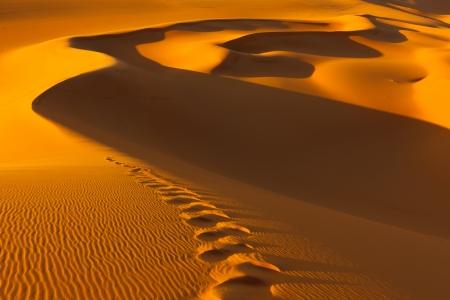 夕日の砂丘の上の足跡