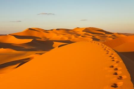 dune: Huellas en las dunas de arena en la puesta de sol - desierto de Murzuq, Sahara, Libia Foto de archivo
