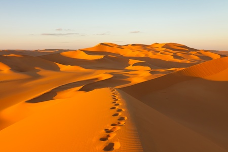 sahara desert: Footprints in the sand dunes at sunset