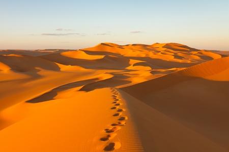 desierto: Huellas en las dunas de arena al atardecer