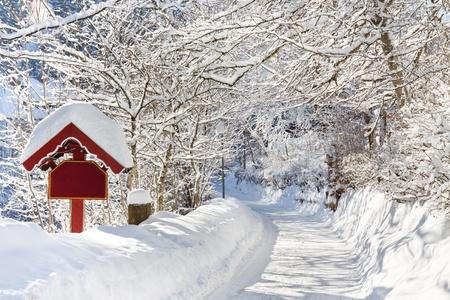 꼭대기가 눈으로 덮인: A beautiful day in winter wonderland. Snowcapped trees over snowy country road.
