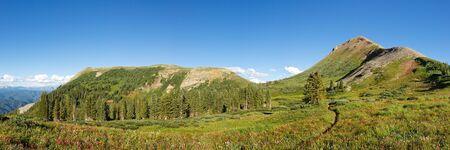 san juans: Panorama of idyllic alpine meadow in the San Juan Mountains along the Colorado Trail.