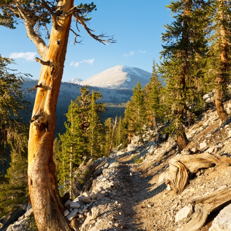 pacific crest trail: John Muir Trail Pacific Crest Trail in the Sierra Nevada, California, USA Stock Photo