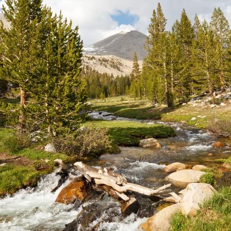 Whitney Creek - Beautiful alpine flux de l'ouest de Mount Whitney, de la Sierra Nevada, la Californie, Etats-Unis
