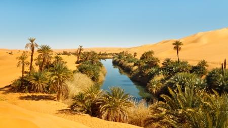 Umm al-Ma Lake - oasis idílico en el mar de arena de Awbari, desierto del Sahara, Libia Foto de archivo