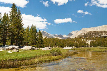 West Face of Mount Whitney seen from Crabtree Meadows in the High Sierra, California, USA.