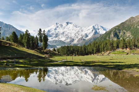 Nanga Parbat reflected in a pond at Fairy Meadows  The world Stock Photo