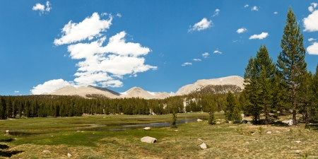 jmt: Crabtree Meadows in the Sierra Nevada, California, USA. West Face of Mount Whitney in the Distance.
