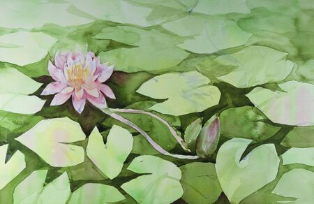 pink lotus in the pond by watercolors painting photo