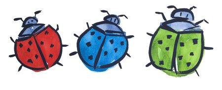 beetle by watercolors Stock Photo - 9440734