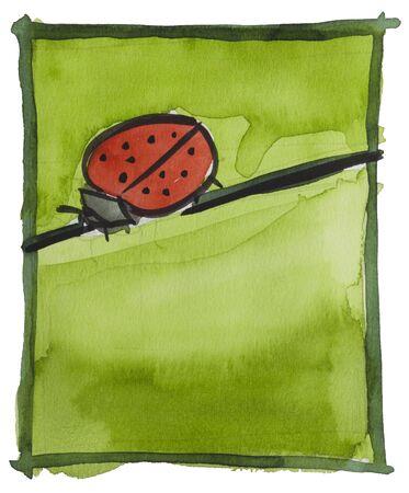 walking bug by watercolors Stock Photo - 9440794