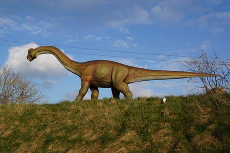 sauropod: Una gran Brachiosaurus extinto - Brachiosaurus altithorax Foto de archivo