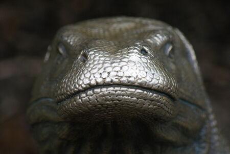 Statue of a Large Komodo Dragon - Varanus komodoensis