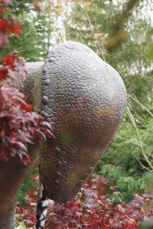 Pachycephalosaurus - the large cranium charging extinct dinosaur photo
