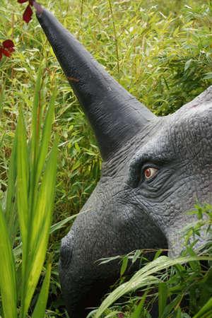 Styracosaurus - large horned armoured extinct prehistoric dinosaur photo