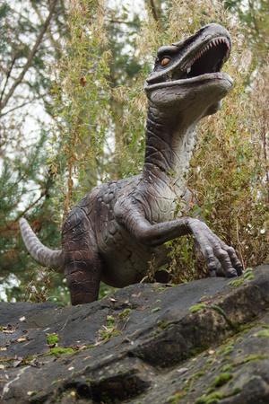 predatory: Velociraptor - extinct prehistoric fearsome carnivorous predatory dinosaur