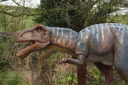 fragilis: Prehistoric views - A fierce Allosaurus - Allosaurus fragilis