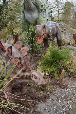 stegosaurus: Dinosaurios - Un Allosaurus carnívoro caza de un Stegosaurus