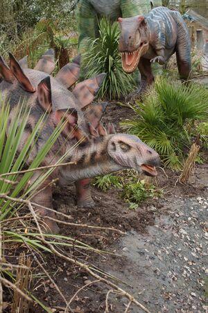 carnivorous: Dinosaurs - A carnivorous Allosaurus hunting a Stegosaurus