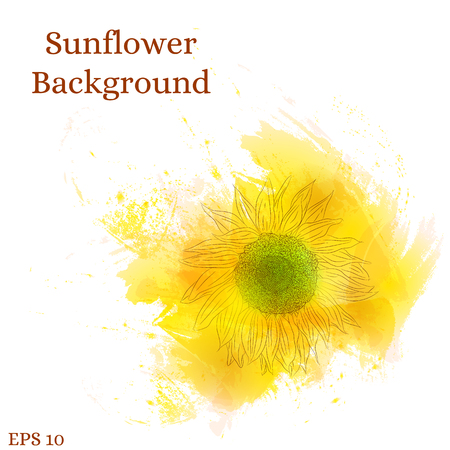 Sunflower background. Watercolor yellow flower. Design for wedding cards, save the date, birthday. Bright and Sunny style. Drawn the outlines of a sunflower. Vector illustration.