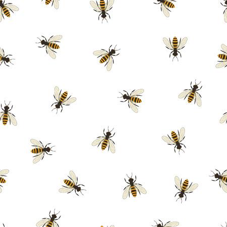 abeja reina: Modelo inconsútil de la abeja. silueta y negro de color naranja de la abeja. insecto volador. El minimalismo y la sencillez del diseño. Ilustración del vector.