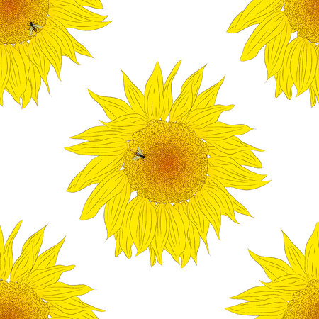 nectar: Sunflower seamless pattern. A bee collects nectar from a sunflower. Bright yellow seamless background. Flowers isolated on white. The beauty of nature. Vector illustration.