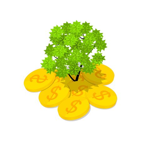 currency glitter: Isometric money tree. Green Vera growing out of money. Gold coins. The concept of success. A lot of dollars. The financial wealth. Vector illustration.