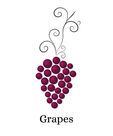 purple grapes: Vine with bunch of grapes. Logo for winery, wine store, wine menu. Round purple grapes. Healthy eating. Vitamins for health. Vector illustration.