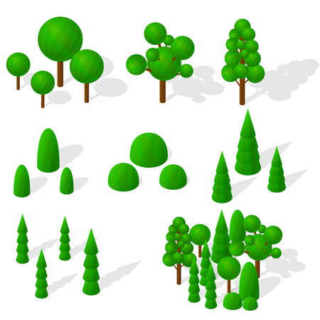 vegetation: Isometric trees, firs and shrubs. The green vegetation. Round deciduous trees. The ecology of the planet. Mixed forest. Trees with shadow. Vector illustration.