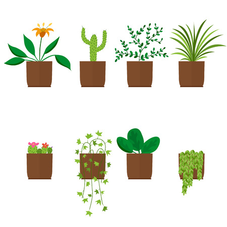 Flowers in pots. House plant. Flat style. Palm, cactus, ficus, and others. Vector illustration. Ilustrace